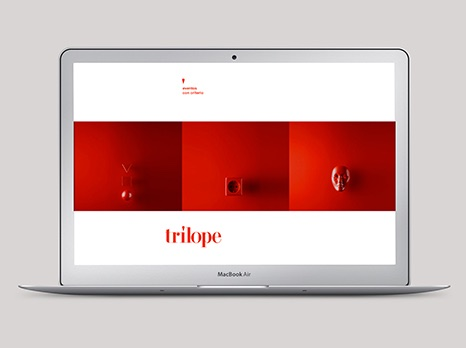 TRÍLOPE / WEB DESIGN