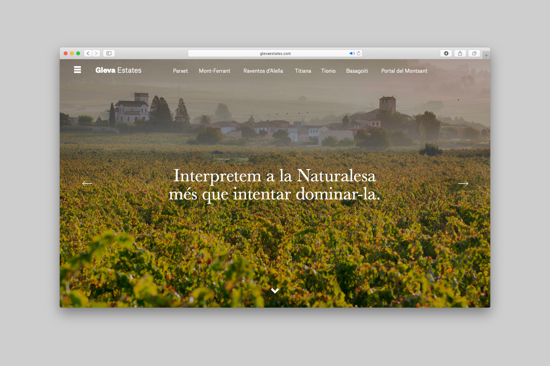 GLEVA ESTATES / WEB DESIGN