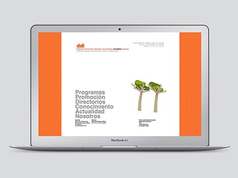 DDI / WEB DESIGN